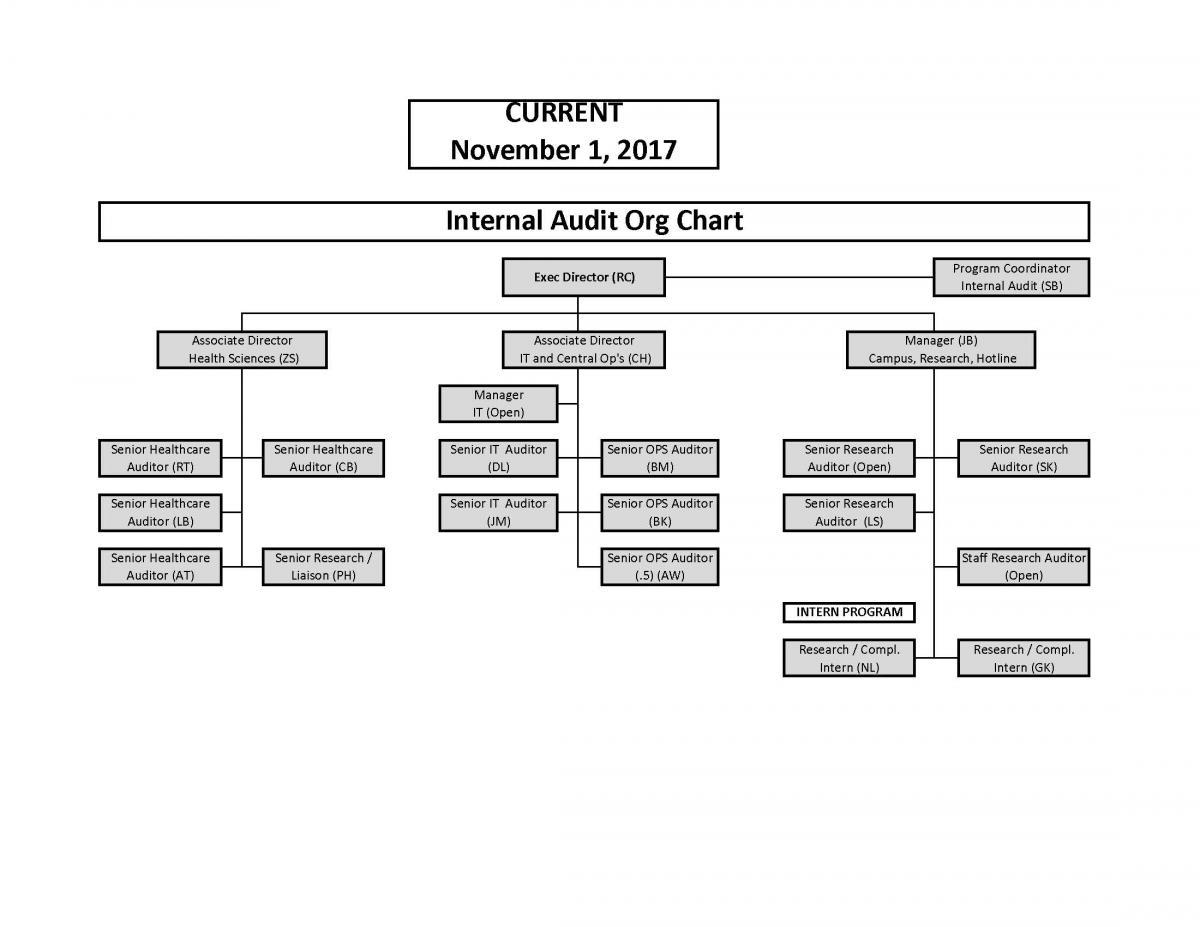 Organizational Chart | Internal Audit